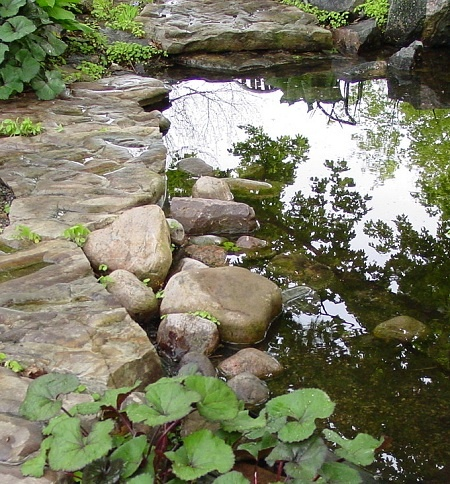 how to make a pond in your garden