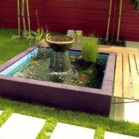 DIY Gardening: How To Make A Pond In Your Garden