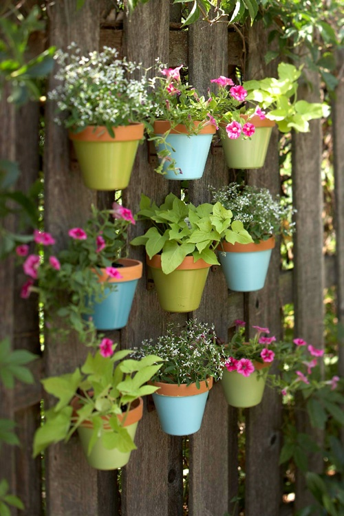 greenery potted plants hung on the fence