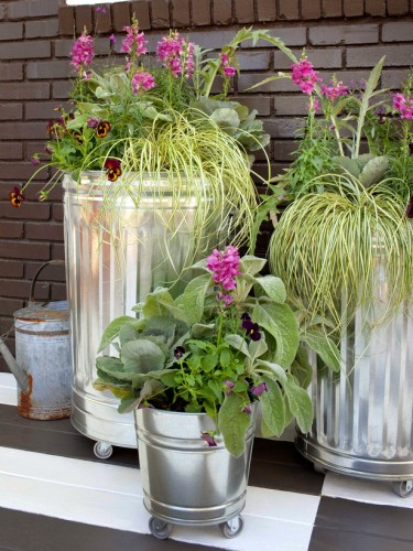 porch plants - Steel Tins