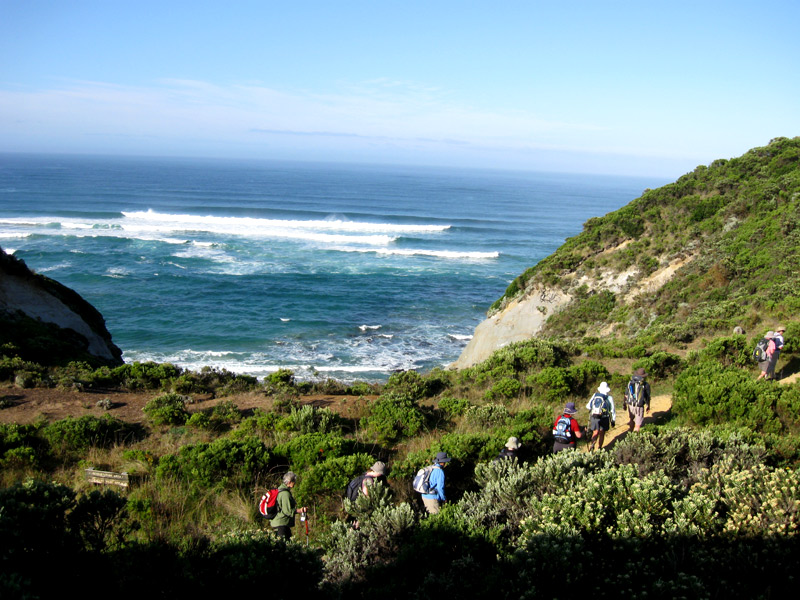 Exploring The Great Ocean Walk – What You Should Bear In Mind?